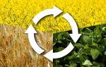 Проектирование севооборотов с приоритетным направлением увеличения производства растительного белка