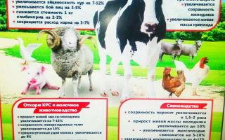Влияние премиксов «Протодарвит и «Протосельвит»  в рационах кроликов на мясную продуктивность