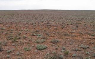 Экологические проблемы сельского хозяйства