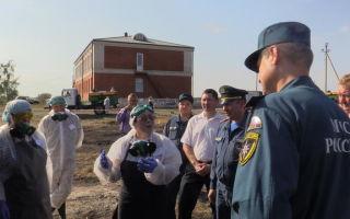 Возникновение природного очага африканской чумы  свиней на территории Волгоградской области