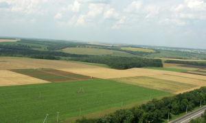 Продуктивность склоновых агроландшафтов  в зоне каштановых почв