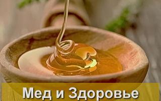 Полезные свойства меда для здоровья