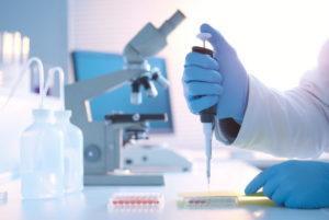 - Значение лабораторных биохимических  исследований в диагностике болезней животных - veterinarija
