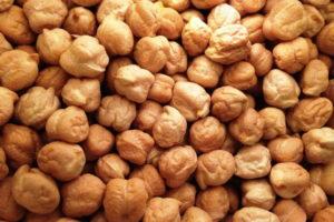 - Использование нута на пищевые и кормовые цели - rastenievodstvo