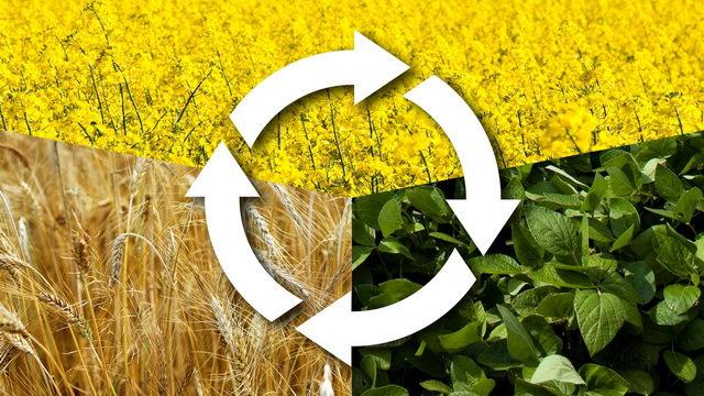 - Проектирование севооборотов с приоритетным направлением увеличения производства растительного белка - zemledelie