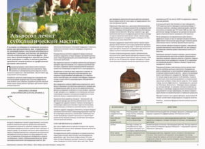 Коровы - Влияние системы кормления крупного рогатогоскота на качество молока-сырья - moloko, kormlenie-i-ratsiony-dlya-krs, kormlenie