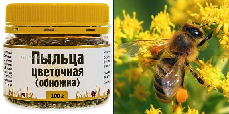 - Что лечит пчелиная пыльца - pchelovodstvo