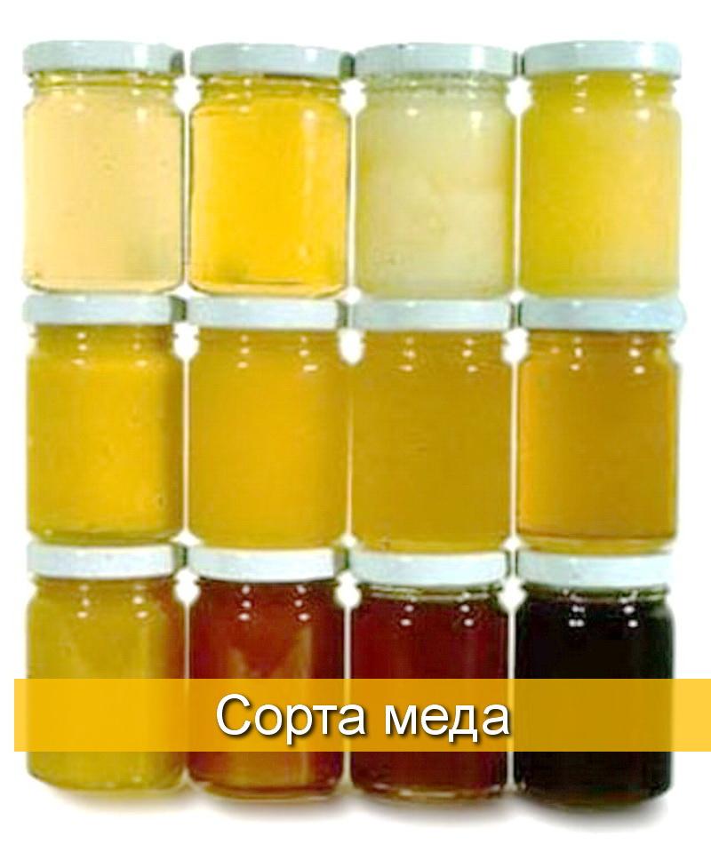 - Характеристика видов и сортов меда - pchelovodstvo, med