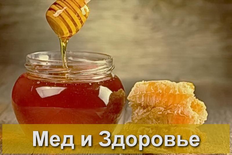 - Полезные свойства меда для здоровья - pchelovodstvo, med
